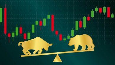 حیوانات معامله گر در بازار